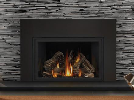 Sensational Napoleon Infrared X4 Gas Fireplace Insert Xir4N 1Sb Download Free Architecture Designs Embacsunscenecom