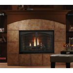 Kingsman Direct Vent Gas Fireplace - IPI - Natural Gas - HBZDV4224NE
