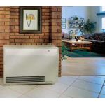 Empire Direct Vent High Efficient Furnace - 20,000 BTU - DV-20-E