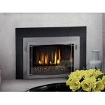 Napoleon Infrared 3G Gas Fireplace Inserts - IR3GNSB