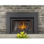 Napoleon Infrared X3 Gas Fireplace Inserts - XIR3NSB
