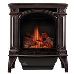 Napoleon Bayfield GDS25 Brown Cast Iron Gas Stove GDS25NN