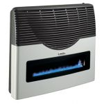 Martin Propane Direct Vent Thermostatic Heater - 20000 BTU with Window - MDV20VP