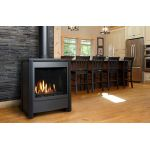 Free Standing Direct Vent Gas Stoves - FDV451