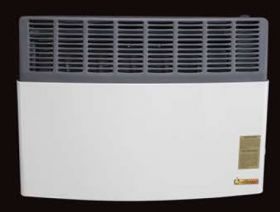 Ashley Direct Vent 17,000 BTU Heater LP Gas - AGDV20L