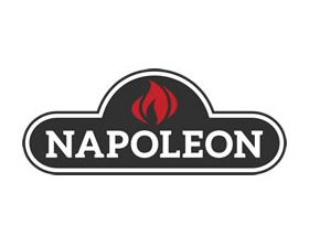 Venting Pipe - Napoleon Kit Includes: Double Ply Aluminum Liner, Deluxe Raincap, Chimney Flashing and Termination Plate - 3'' Diameter - GAKIT330