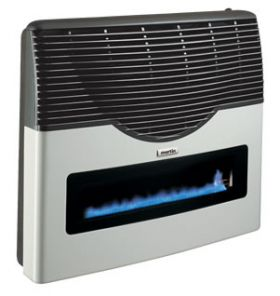 Martin Natural Gas Direct Vent Thermostatic Heater - 20000 BTU with Window - MDV20VN